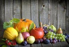 Λαχανικά και καρποί το φθινόπωρο Στοκ Εικόνες