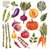 Λαχανικά και καρπός Στοκ Φωτογραφία
