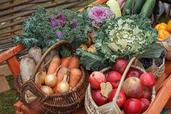 Λαχανικά και φρούτα σε μια του χωριού έκθεση Στοκ Φωτογραφία