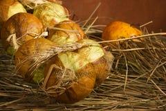 λαχανικά καρπού Στοκ φωτογραφία με δικαίωμα ελεύθερης χρήσης