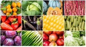 λαχανικά καρπών κολάζ Στοκ Φωτογραφίες
