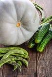 Λαχανικά, κολοκύθα, αγγούρια και πράσινα φασόλια Στοκ φωτογραφία με δικαίωμα ελεύθερης χρήσης