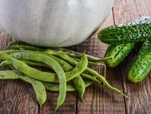 Λαχανικά, κολοκύθα, αγγούρια και πράσινα φασόλια Στοκ φωτογραφίες με δικαίωμα ελεύθερης χρήσης