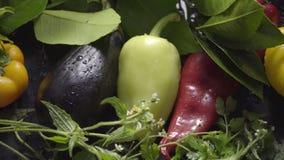Λαχανικά, μελιτζάνες και πιπέρια σε μια σκοτεινή επιφάνεια στις πτώσεις του νερού στο φυσικό φως απόθεμα βίντεο
