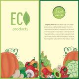 λαχανικά με τα λογότυπα και εγγραφή σε ένα μπεζ και πράσινο υπόβαθρο ελεύθερη απεικόνιση δικαιώματος