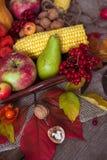 Λαχανικά, μούρα και φρούτα φθινοπώρου Εποχιακά τρόφιμα φθινοπώρου - PU Στοκ Φωτογραφίες