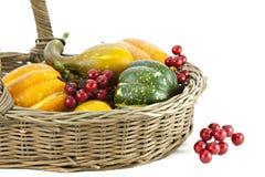 λαχανικά μούρων φθινοπώρο&up Στοκ φωτογραφία με δικαίωμα ελεύθερης χρήσης