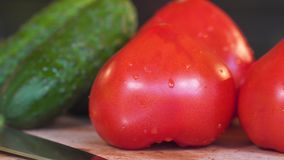 Λαχανικά, ντομάτες και αγγούρια, ταξίδι στον ολισθαίνοντα ρυθμιστή απόθεμα βίντεο