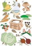 λαχανικά παστώματος προτύ& Στοκ φωτογραφία με δικαίωμα ελεύθερης χρήσης