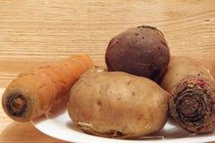 Λαχανικά που μαγειρεύονται για την προετοιμασία σαλάτας Στοκ Εικόνα