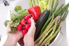 λαχανικά που πλένουν τη γ&up Στοκ Φωτογραφία