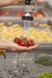 Λαχανικά που πλένονται φρέσκα Στοκ Φωτογραφίες