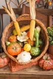 Λαχανικά πτώσης σε ένα καλάθι Στοκ Εικόνα