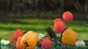 Λαχανικά πτώσης στον πίνακα απόθεμα βίντεο