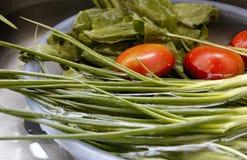 Λαχανικά πλυσίματος Στοκ φωτογραφία με δικαίωμα ελεύθερης χρήσης