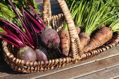 λαχανικά ρίζας καλαθιών Στοκ φωτογραφία με δικαίωμα ελεύθερης χρήσης