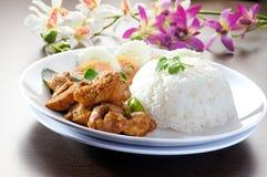 λαχανικά ρυζιού κοτόπουλου Στοκ Εικόνα