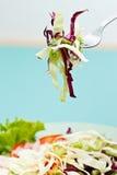 λαχανικά σαλάτας Στοκ Φωτογραφία