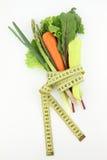 λαχανικά σιτηρεσίου Στοκ Φωτογραφία