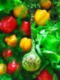 Λαχανικά στα ράφια Στοκ φωτογραφίες με δικαίωμα ελεύθερης χρήσης
