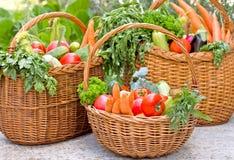 Λαχανικά στα ψάθινα καλάθια Στοκ φωτογραφίες με δικαίωμα ελεύθερης χρήσης