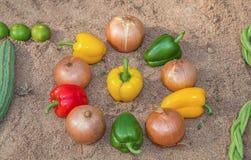 Λαχανικά στην άμμο. Στοκ Φωτογραφία