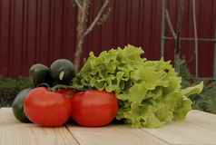 Λαχανικά στις προγραμματισμένες σανίδες Στοκ φωτογραφία με δικαίωμα ελεύθερης χρήσης