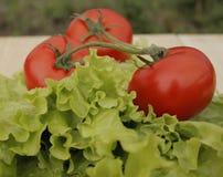 Λαχανικά στις προγραμματισμένες σανίδες Στοκ φωτογραφίες με δικαίωμα ελεύθερης χρήσης