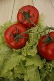Λαχανικά στις προγραμματισμένες σανίδες Στοκ Εικόνες