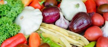 Λαχανικά στο εκλεκτής ποιότητας ξύλινο υπόβαθρο - συγκομιδή φθινοπώρου Στοκ Εικόνες