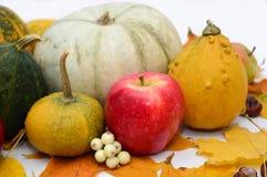 Λαχανικά στο ελαφρύ υπόβαθρο, κολοκύθα, μήλα Στοκ εικόνες με δικαίωμα ελεύθερης χρήσης