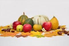 Λαχανικά στο ελαφρύ υπόβαθρο, κολοκύθα, μήλα Στοκ Φωτογραφίες