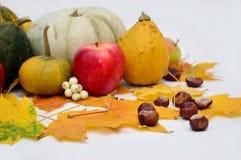 Λαχανικά στο ελαφρύ υπόβαθρο, κολοκύθα, μήλα Στοκ Εικόνες