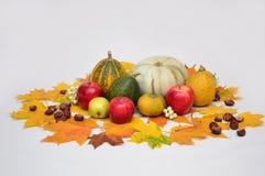 Λαχανικά στο ελαφρύ υπόβαθρο, κολοκύθα, μήλα Στοκ φωτογραφίες με δικαίωμα ελεύθερης χρήσης