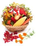 Λαχανικά στο καλάθι στοκ εικόνα