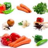 λαχανικά συλλογής Στοκ εικόνες με δικαίωμα ελεύθερης χρήσης
