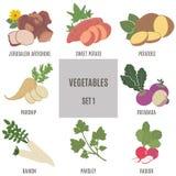 Λαχανικά Σύνολο 1 Στοκ Φωτογραφία