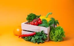 Λαχανικά υποβάθρου οργανικής τροφής στο καλάθι ντομάτες, πιπέρι, μαϊντανός Στοκ εικόνα με δικαίωμα ελεύθερης χρήσης