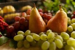 Λαχανικά φθινοπώρου, κολοκύθα, αχλάδι, σταφύλια, συγκομιδή στην ξύλινη ετικέττα Στοκ Φωτογραφίες