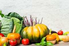 Λαχανικά φθινοπώρου Φρέσκια κολοκύθα, καλαμπόκι, toions και άλλο φθινόπωρο αφθονίας Στοκ εικόνα με δικαίωμα ελεύθερης χρήσης
