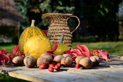 Λαχανικά φθινοπώρου Στοκ φωτογραφίες με δικαίωμα ελεύθερης χρήσης