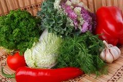 λαχανικά χορταριών φθινοπώ Στοκ Εικόνες