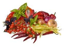 Λαχανικά Στοκ εικόνες με δικαίωμα ελεύθερης χρήσης