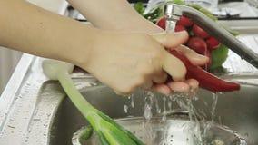 Λαχανικά Waman washin απόθεμα βίντεο