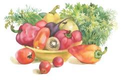 Λαχανικά Watercolor στο κύπελλο και τα χορτάρια, που απομονώνονται στο λευκό Στοκ Εικόνες