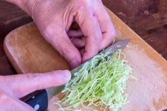 Λαχανικό λάχανων μαγείρων, μπριζολών και φετών Στοκ φωτογραφία με δικαίωμα ελεύθερης χρήσης