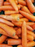 Λαχανικό για τα υγιή τρόφιμα διατροφής Στοκ φωτογραφίες με δικαίωμα ελεύθερης χρήσης