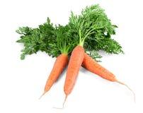 Λαχανικό καρότων με τα φύλλα που απομονώνονται στο λευκό Στοκ φωτογραφία με δικαίωμα ελεύθερης χρήσης