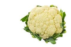 Λαχανικό κουνουπιδιών στοκ φωτογραφία με δικαίωμα ελεύθερης χρήσης