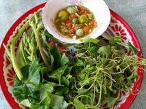 Λαχανικό κόλα Gotu Στοκ Εικόνες